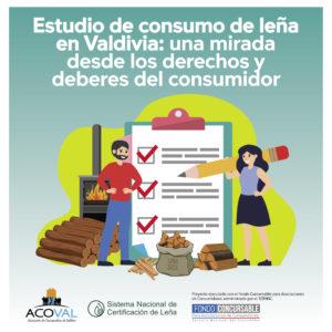 Estudio leña Valdivia. Una mirada de los derechos y deberes del consumidor